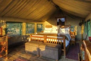 Safari tents at Moremi