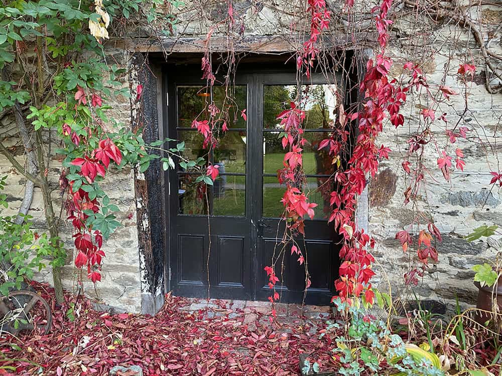 Olivers restaurant with autumn leaves