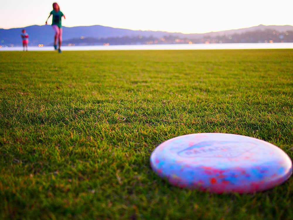 Frisbee in a park