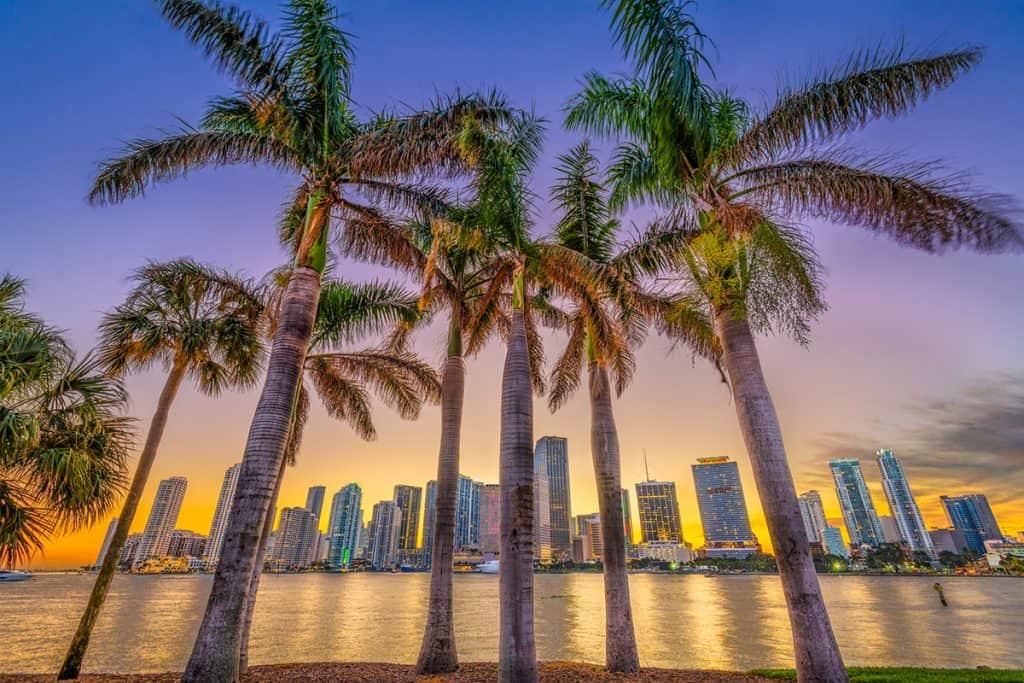Biscayne Bay, Miami at sunset