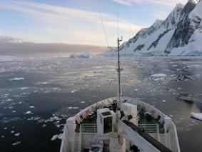 Quark Antarctica
