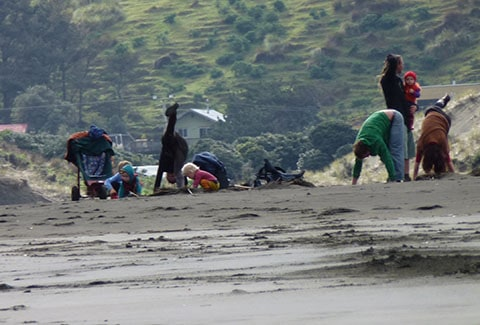 Bethells Beach surf lesson