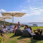 New Zealand's best wineries to while away the summer