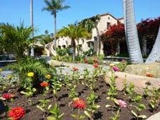 Santa Barbara motel