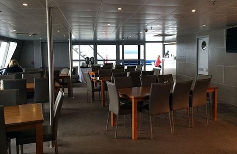 Auckland overnight cruise