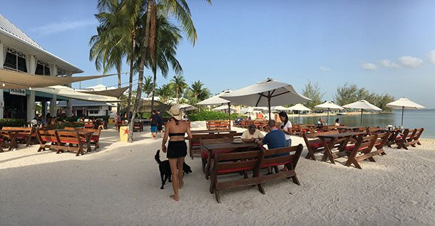 Beach bar Cayman