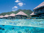 Why you should stay at Tahiti's Hilton Moorea