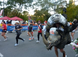 New York Marathon costume