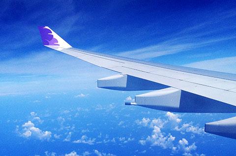 Hawaiian airlines wing