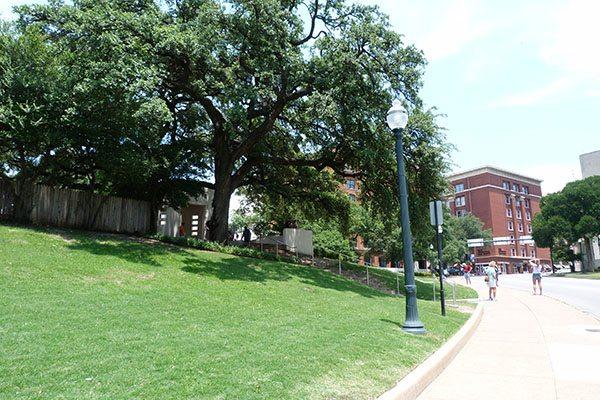 Grassy knoll Dallas